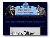 Chinese Crested Dogs kennel Forseti's