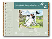 Fox Terriers Foxingdane