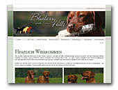 Blueberry Hills Labrador Retrievers
