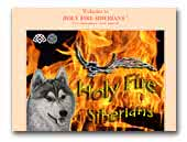 Holy Fire Siberians
