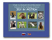 Joy in motion Labrador retriever kennel