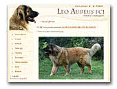 Leo Aureus FCI Leonberger Kennel