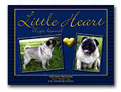 Little Heart Mops Kennel