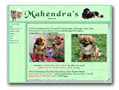 Mahendra's Tibetan Spaniels and Mastiffs
