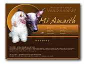 Peruvian Hairless Dog Mi Amarth kennel