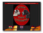 Great Danes Kennel Prima Primissima