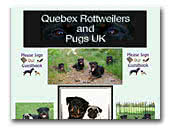 Quebex Rottweilers and Pugs