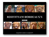 Rootitsam's Dogue de Bordeaux Kennel