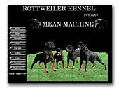 Mean Machine Rottweilers