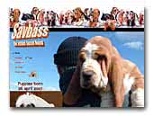 Basset Hounds Savbass Kennel