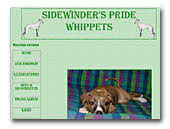 Sidewinder's Pride whippets kennel