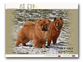 Chow Chow & Smooth Chows Kennel La Bur
