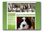 Springer Nest Kennel English Springer Spaniel