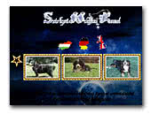 Szárligeti-Holdfény Kennel Bernese Mountain Dogs