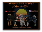 Ka-La-Em Tibetan Mastiffs kennel