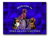 Toklarama's kennel