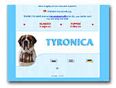 Saint bernard kennel Tyronica