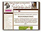 Welsh Springer Spaniels Kennel Minebea