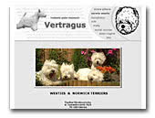 Vertragus Westies & Norwich Terriers