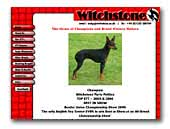 Witchstone English Toy Terriers