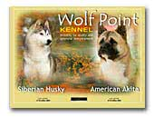 Wolf Point American Akita kennel