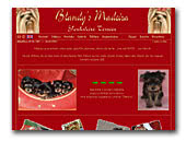 Yorkshire Terrier Blandy's Madeira Kennel